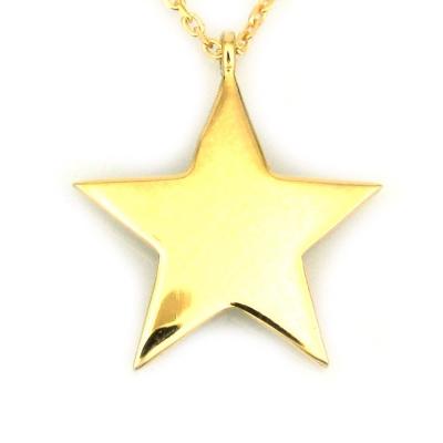 kuyumcunuznet - Altın Gösterişli Yıldız Kolye (14 Ayar)